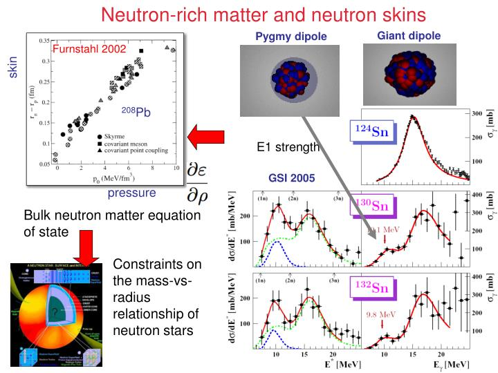 Neutron-rich matter and neutron skins