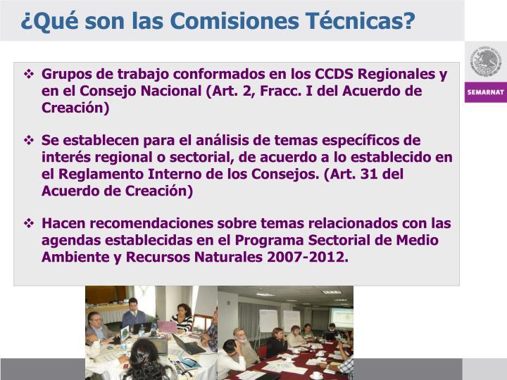 ¿Qué son las Comisiones Técnicas?