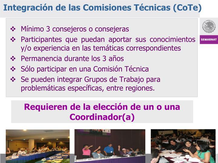 Integración de las Comisiones Técnicas (CoTe)