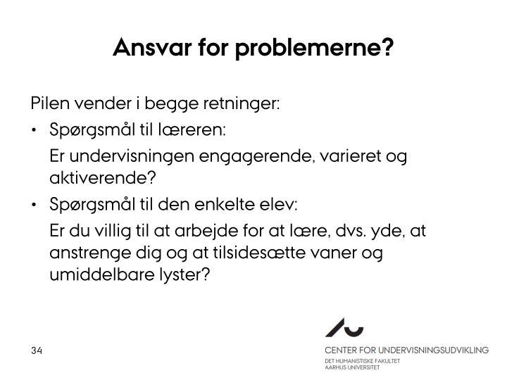 Ansvar for problemerne?