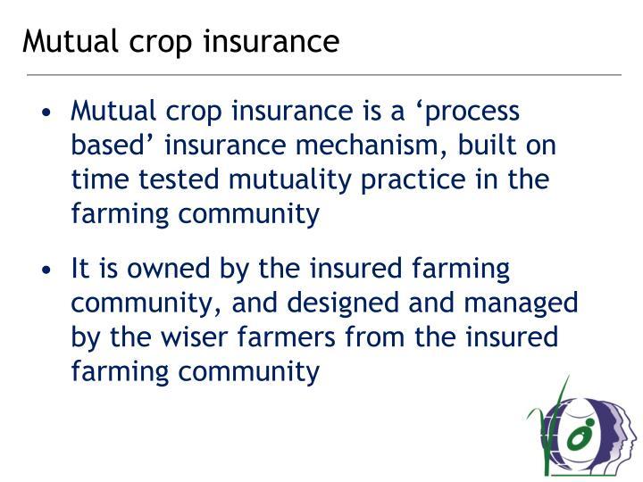 Mutual crop insurance