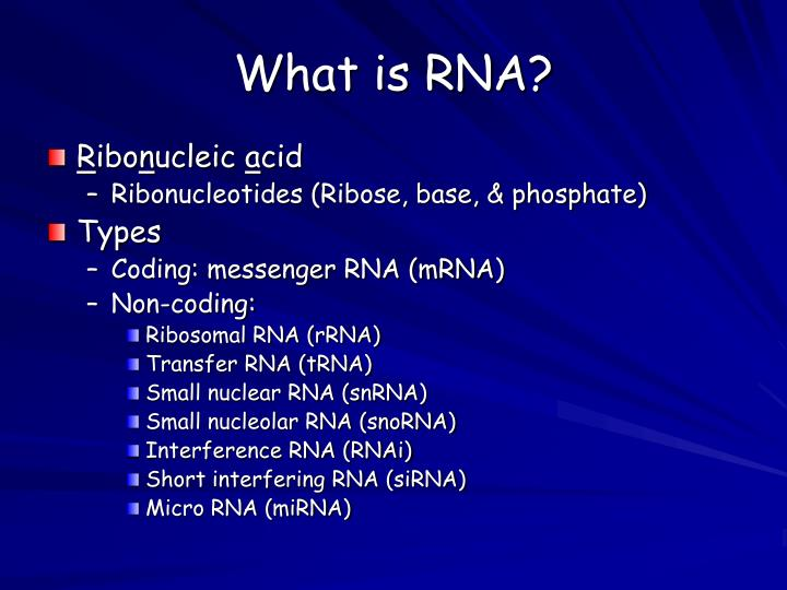 What is RNA?