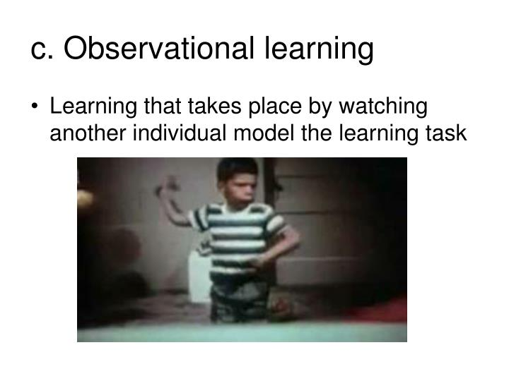 c. Observational learning