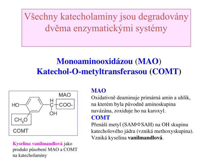 Všechny katecholaminy jsou degradovány dvěma enzymatickými systémy