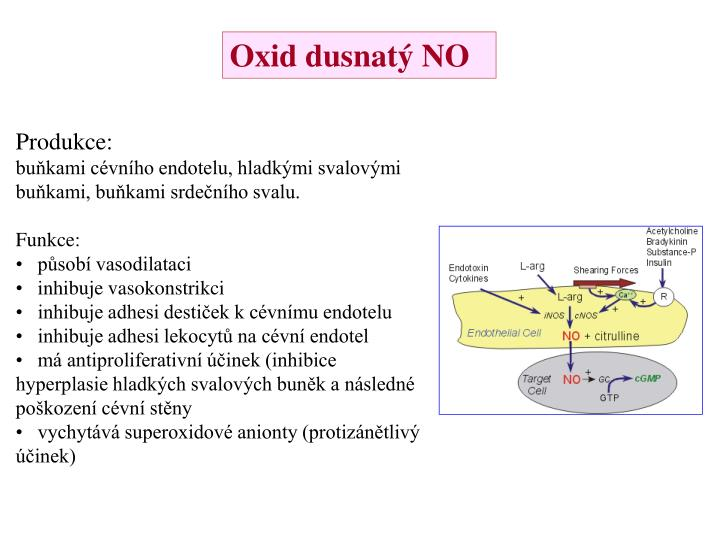 Oxid dusnatý NO