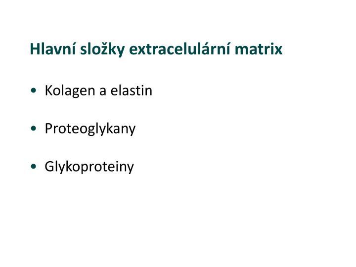 Hlavní složky extracelulární matrix