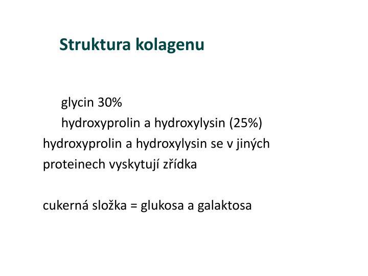 Struktura kolagenu