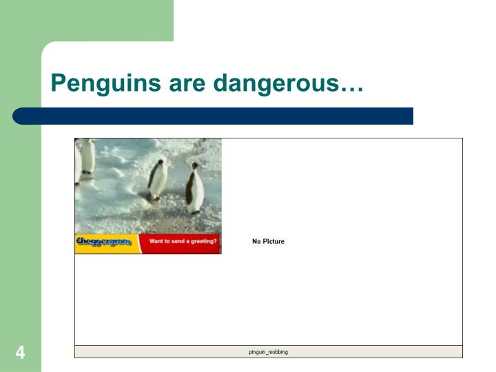 Penguins are dangerous…