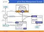 glite data management system