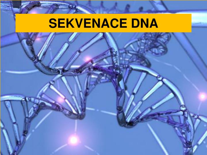 SEKVENACE DNA