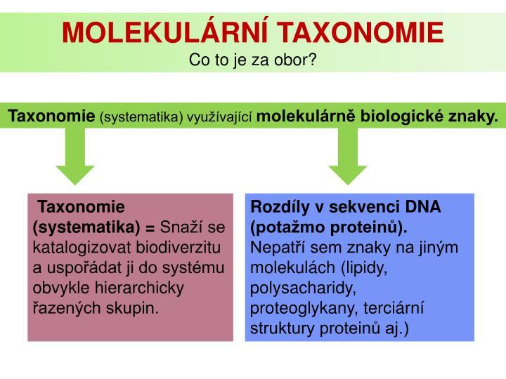 Molekulární