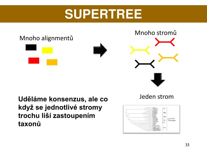 SUPERTREE