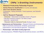 cnpq s granting instruments