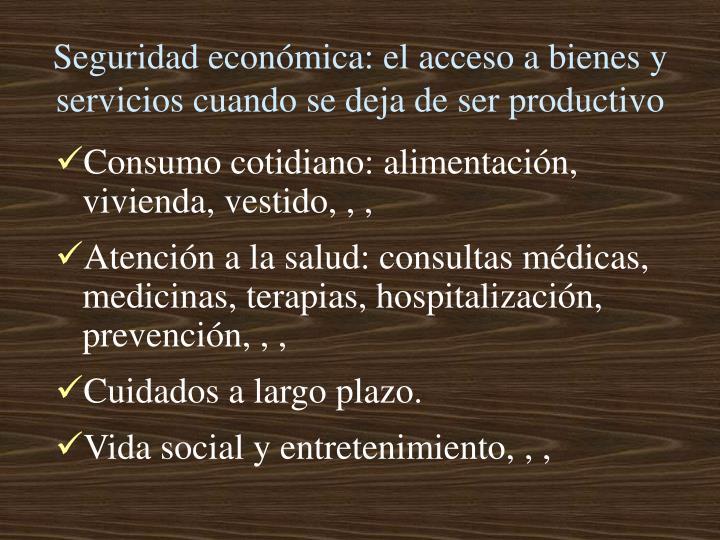 Seguridad económica: el acceso a bienes y servicios cuando se deja de ser productivo
