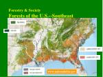 forestry society forests of the u s southeast