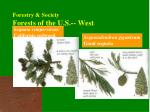 forestry society forests of the u s west2
