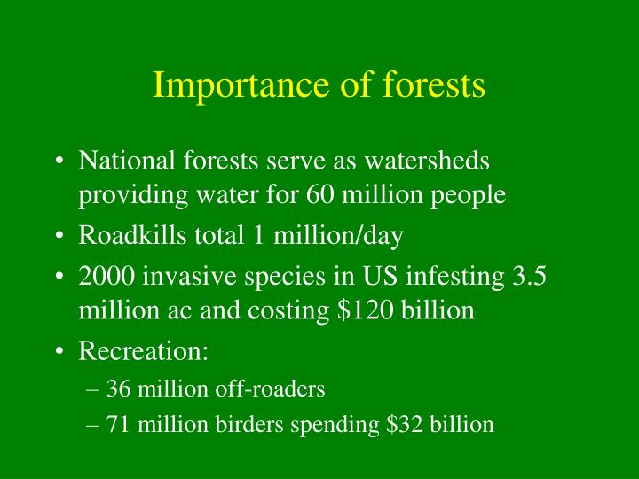 Importance of forests