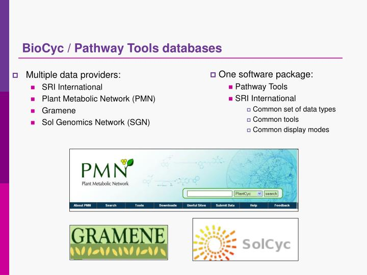 BioCyc / Pathway Tools databases