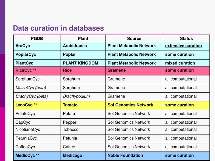 Data curation in databases