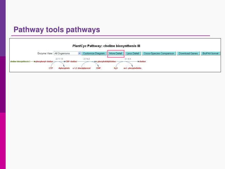 Pathway tools pathways
