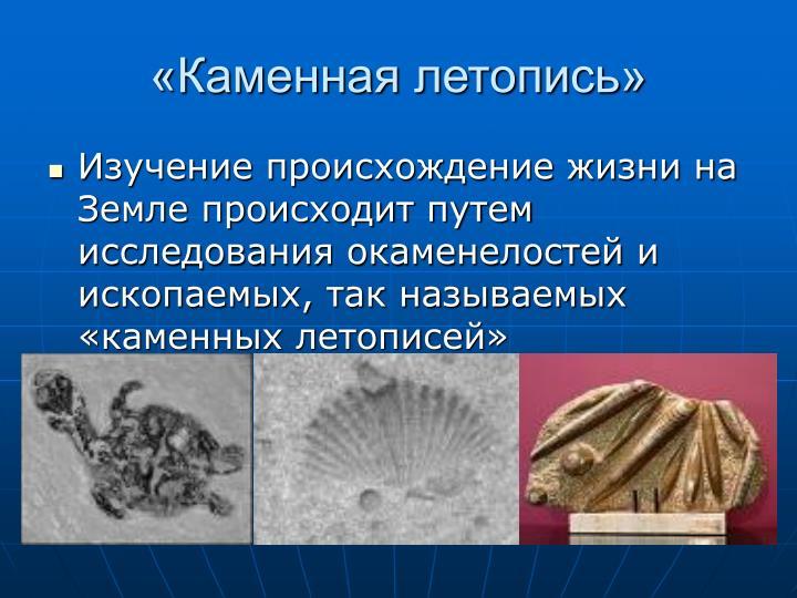 «Каменная летопись»