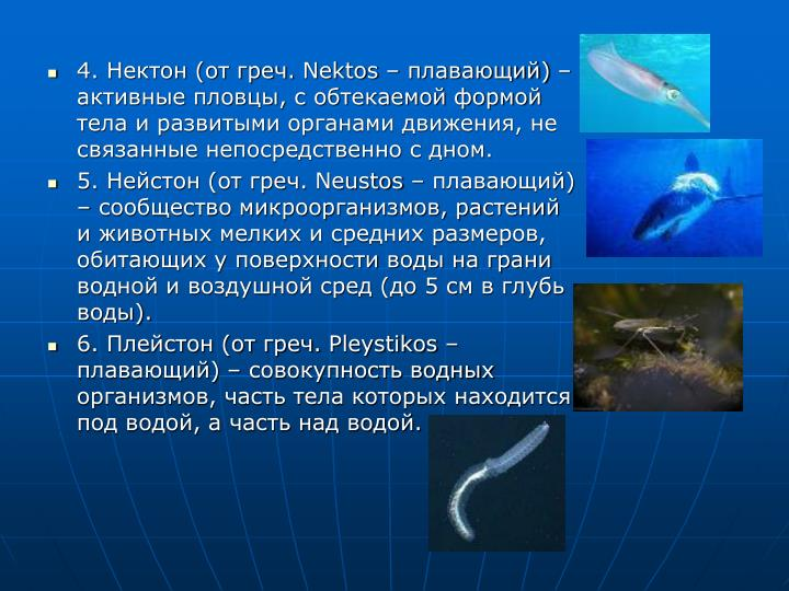 4. Нектон (от греч.