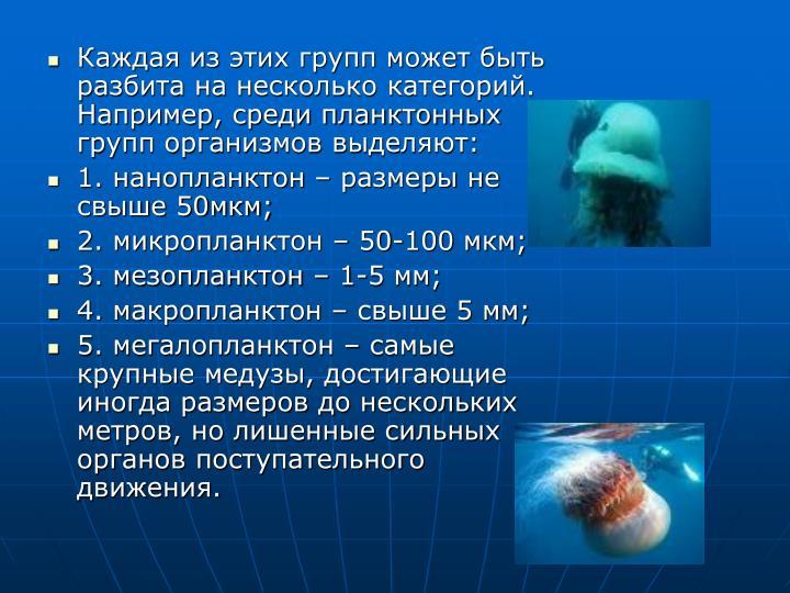 Каждая из этих групп может быть разбита на несколько категорий. Например, среди планктонных групп организмов выделяют:
