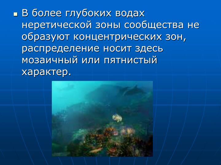 В более глубоких водах неретической зоны сообщества не образуют концентрических зон, распределение носит здесь мозаичный или пятнистый характер.