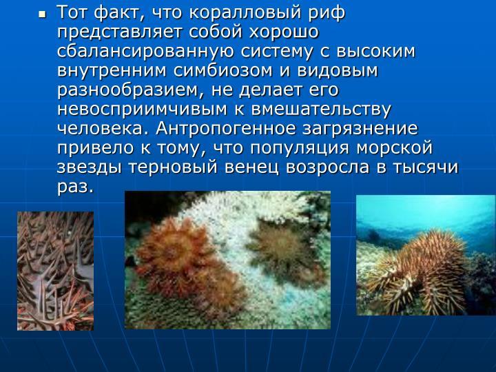 Тот факт, что коралловый риф представляет собой хорошо сбалансированную систему с высоким внутренним симбиозом и видовым разнообразием, не делает его невосприимчивым к вмешательству человека. Антропогенное загрязнение привело к тому, что популяция морской звезды терновый венец возросла в тысячи раз.
