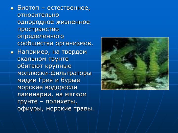 Биотоп – естественное, относительно однородное жизненное пространство определенного сообщества организмов.
