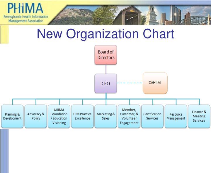 New Organization Chart