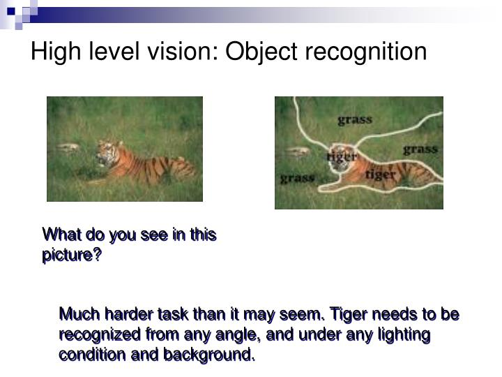 High level vision: Object recognition