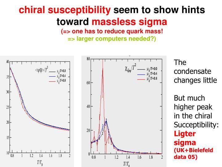 chiral susceptibility