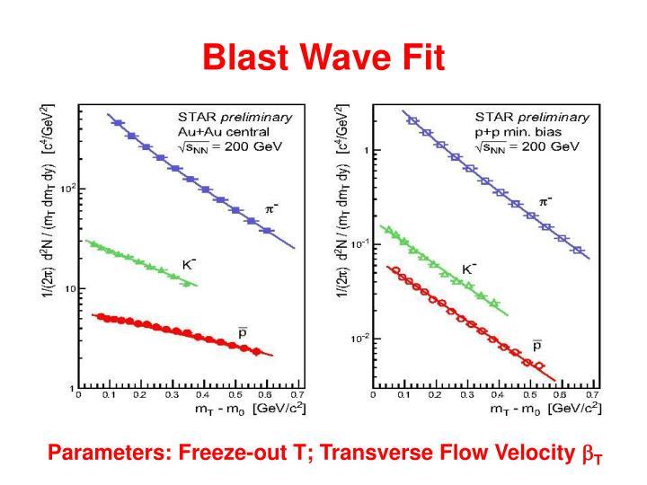 Blast Wave Fit