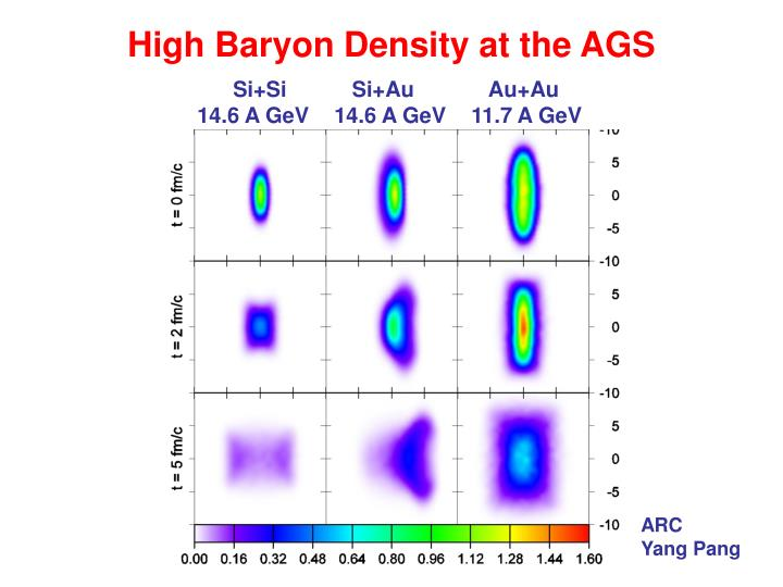 High Baryon Density at the AGS