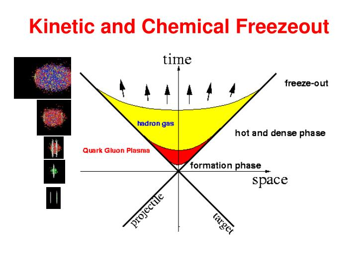 Kinetic and Chemical Freezeout