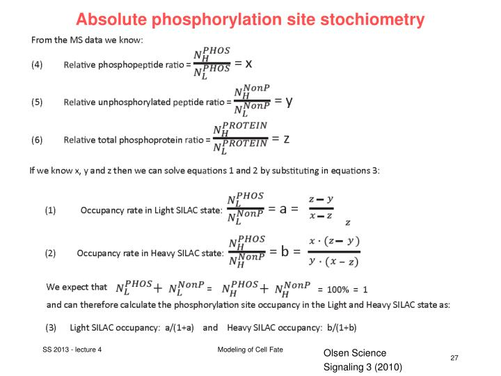 Absolute phosphorylation site stochiometry