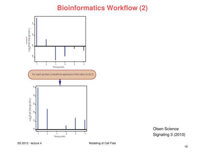 Bioinformatics Workflow (2)