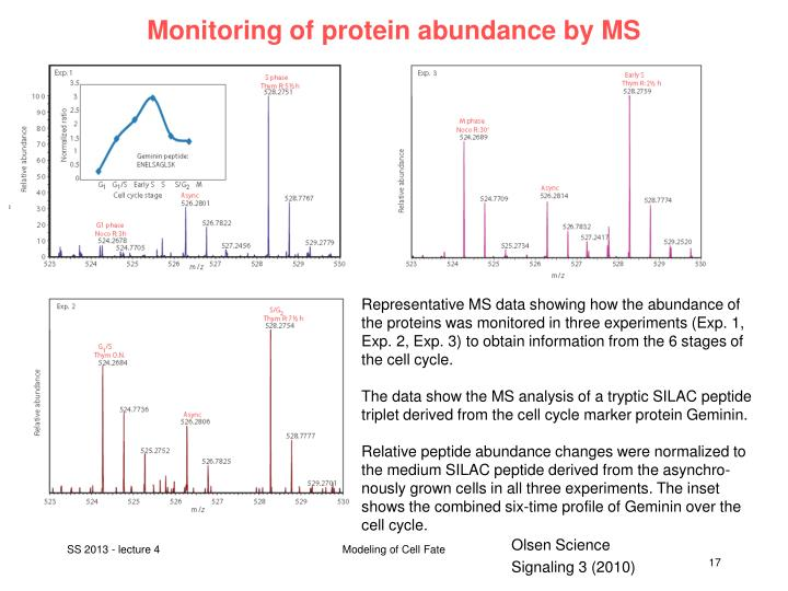 Monitoring of protein abundance by MS