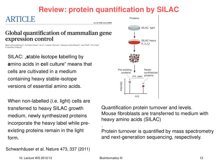 Review: protein quantification by SILAC