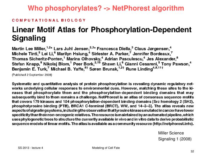 Who phosphorylates? -> NetPhorest algorithm