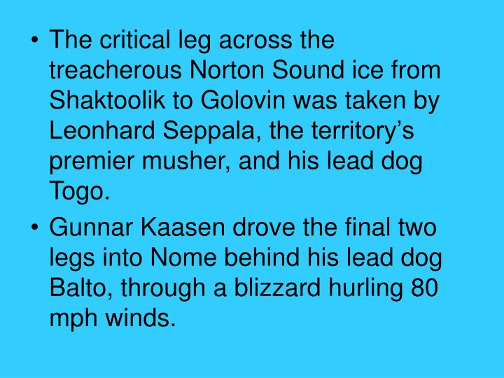The critical leg across the treacherous Norton Sound ice from Shaktoolik to Golovin was taken by Leonhard Seppala, the territory's premier musher, and his lead dog Togo.