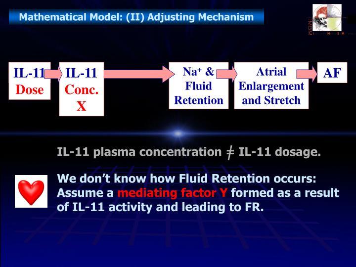 Mathematical Model: (II) Adjusting Mechanism