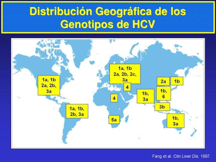 Distribución Geográfica de los Genotipos de HCV