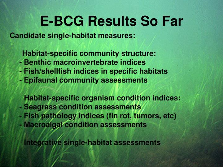 E-BCG Results So Far