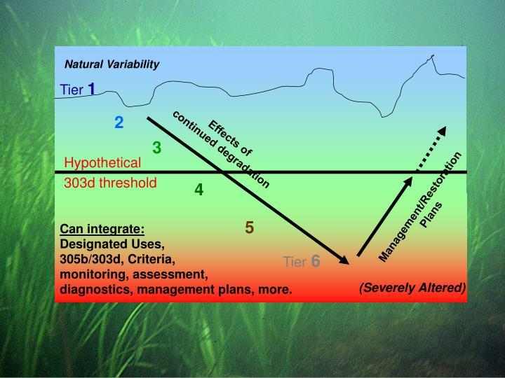 Natural Variability