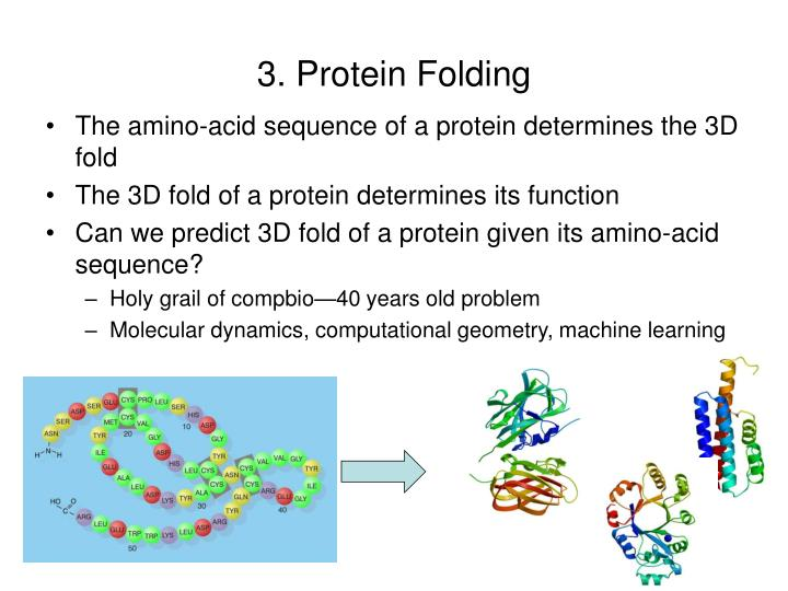 3. Protein Folding