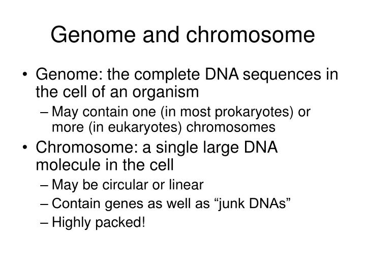 Genome and chromosome