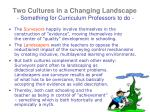 two cultures in a changing landscape something for curriculum professors to do1