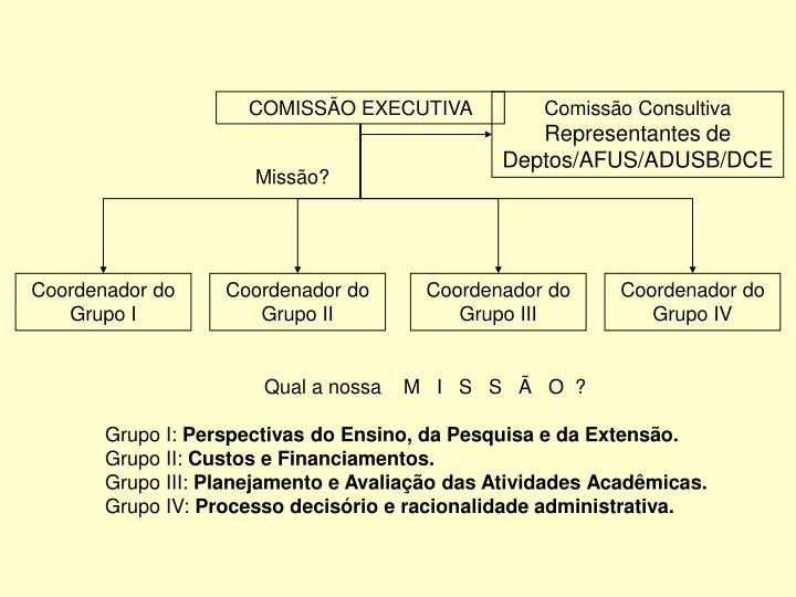 COMISSÃO EXECUTIVA